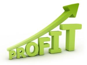 profit plan